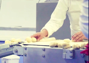 venta de pan congelado en méxico